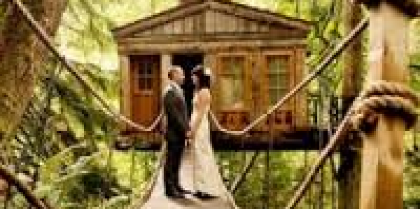treehouse wedding 2